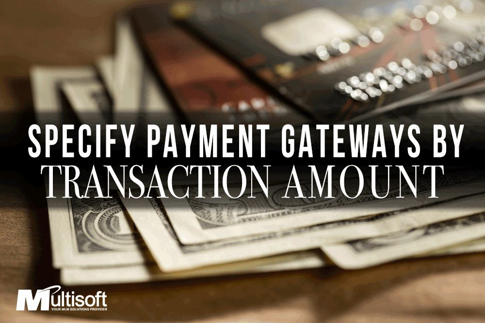 Gateway by Payment Amount