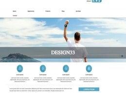 Design 33